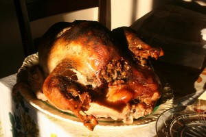 Thanksgiving Turkey - credit Bobolink - Flikr